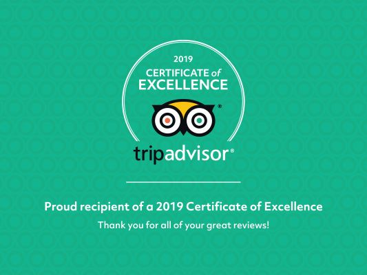 Certificate of excellence Palomino islands
